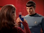A Proper Toast with Romulan Ale